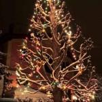 venkovní vánoční osvětlení